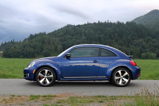 beetle2015